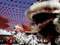 Китайский новый год. История, мифы и традиции