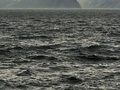 У берегов Канады затонуло рыболовецкое судно, экипаж пропал без вести