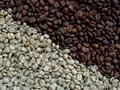 В зернах кофе нашли вещества, понижающие уровень сахара в крови