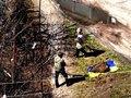 В Чернигове проверяют информацию о том, что коммунальщики собирали мусор в украинский флаг