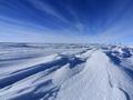 Ледники Антарктики тают все быстрее, но это не связано с глобальным потеплением - ученые