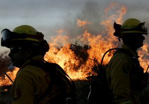 Лесной пожар в Ивано-Франковской области локализировали