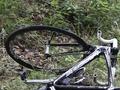 В Харьковской области грузовик сбил насмерть велосипедиста и его пассажира