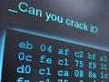 Wikileaks назвал компании, создающие шпионское ПО для властей и корпораций