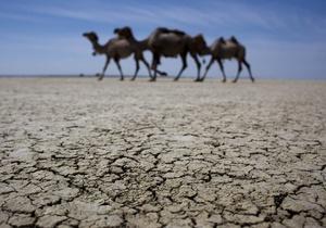 Журнал Корреспондент українською - Через зміни клімату все більше регіонів страждатиме від посухи і від браку продовольства
