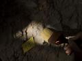 Археологи нашли центр производства соли древних майя