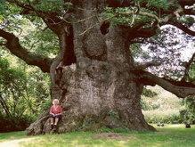 помните миниатюру бубушка и дерево. легенда форума=).