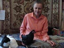 Старейшая в мире курица живет под Полтавой