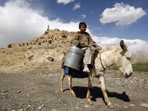 Афганские боевики начали использовать ослов в качестве оружия