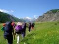Стратегия развития туризма Алтая и Алтайского...