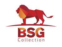 Бизнес сервисез групп (BSG Collection)