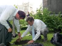 За три года Ющенко высадил около 2,5 тысяч кустов калины
