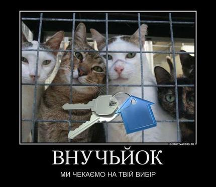 http://k.img.com.ua/img/forall/ui/1728/47/1345111875.jpg