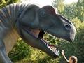 Диплодоков не кормить. Мир динозавров на киевских холмах
