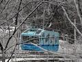Белый и пушистый. В Киеве выпал первый снег