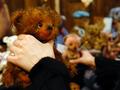 Медвежий уголок. В Киеве прошла выставка Тедди Ленд 2010