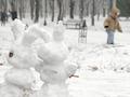 Белая радость. В Киеве пошел снег