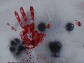 Человек собаке друг! В Киеве состоялся марш против убийств бездомных животных