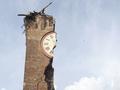 Семеро погибших и тысячи эвакуированных. Разрушительное землетрясение в Италии