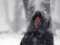 Белым-бело. Киев засыпало первым снегом