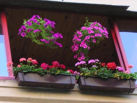 Стартовал конкурс на лучший балкон
